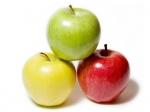 Анализ почвы под плодовые насаждения